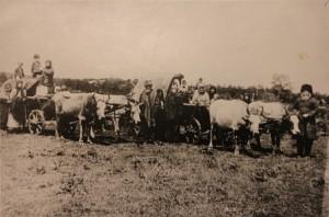 Театрализованное шествие первых казаков-переселенцев в честь 50-летия станицы. Ст. Смоленская. Фото 1914 года.