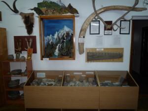 Первый отдел музея